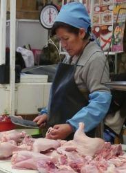 DelphineJonas_4Femme aux cuisses de poulet