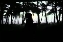 RidingHood-bois sombre